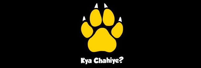 Cheetay.pk on a Trajectory of Growth and Expansion