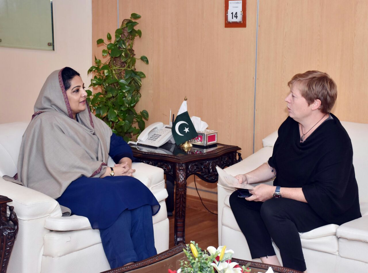 Swedish Ambassador  called on  Anusha Rehman